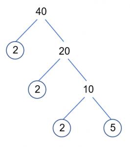 40 Tree