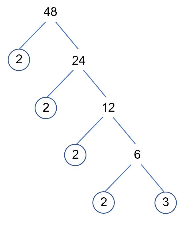 48 Prime Tree Complete