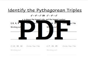 Pythagorean Theorem Worksheet 2 PDF Download