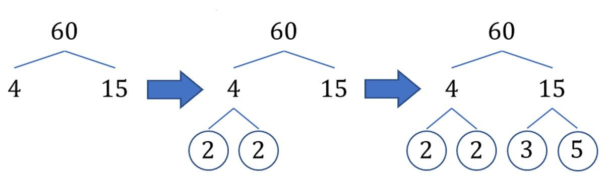 Prime tree creation for 60